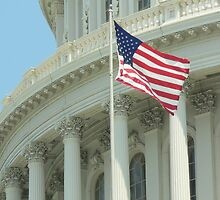 Congress Building and Flag by Great Divide  Photography