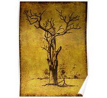dead tree near Ross Poster