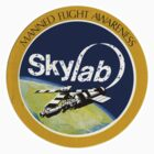 skylab by although
