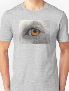 Eye See You ~ T-Shirt
