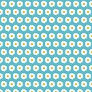 Simple White Daisy on Blue by Lisa Marie Robinson