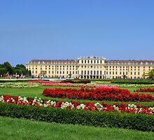 Schönbrunn Palace by Paula Bielnicka