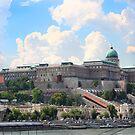 Buda Castle by Paula Bielnicka
