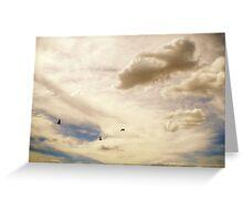 Galahs in Flight Greeting Card