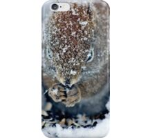 North American Red Squirrel II iPhone Case/Skin