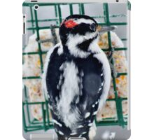 Hairy Woodpecker in the Storm iPad Case/Skin