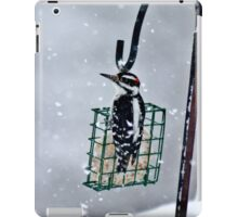 Hairy Woodpecker in the Storm II iPad Case/Skin
