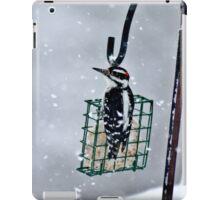 Hairy Woodpecker in the Storm II iPad Case/Skin
