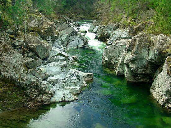 Cowichan Valley Stream by George Cousins