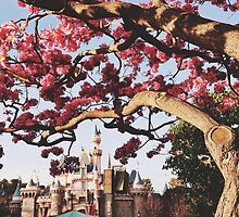 Disneyland Park  by whitneymicaela