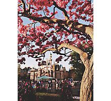 Disneyland Park  Photographic Print