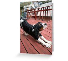 downward dog demonstrates Greeting Card