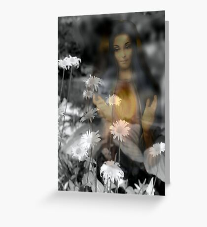 White Lily of the Blessed Trinity Greeting Card
