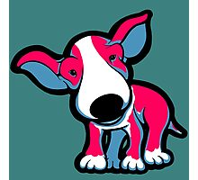EBT Puppy Pink , White and Teal  Photographic Print
