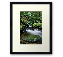 Taggerty River Tranquility Framed Print