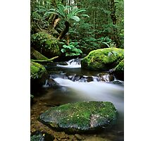 Taggerty River Tranquility Photographic Print