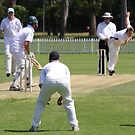 Cricket Series 3 by Steve Bullock