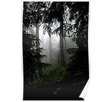 Mt. Parke in the Fog Poster
