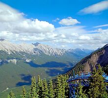 From Sulphur Mountain, High Rockies, Midsummer 1993 by Priscilla Turner