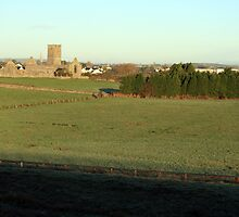 Clare Abbey by John Quinn