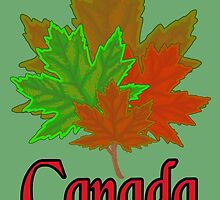 Canadian Maple Leaves by darkesknight