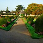 Château de Chenonceau Garden by Alison Cornford-Matheson