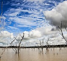 Fairbairn Dam by gamaree L