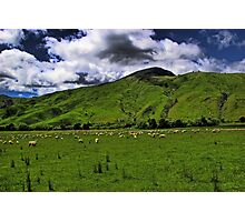The New Zealand Countryside Photographic Print
