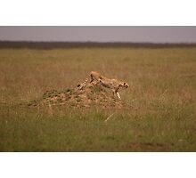 Stealth Mission  Photographic Print