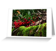 Berries and Moss Greeting Card
