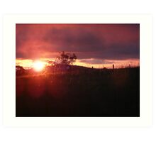 Burnt Sunset Art Print