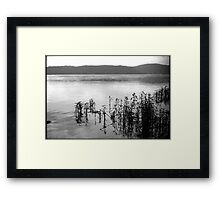 Susquehanna River Framed Print