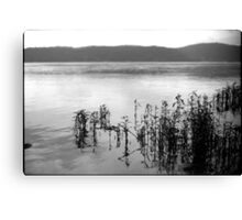 Susquehanna River Canvas Print