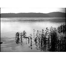 Susquehanna River Photographic Print