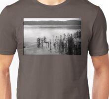 Susquehanna River Unisex T-Shirt