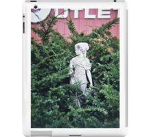 Stone Lady iPad Case/Skin