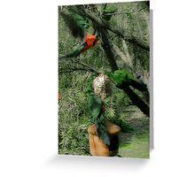 King Parrots Greeting Card
