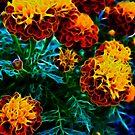 Flowers a glow glow by Jayson Gaskell