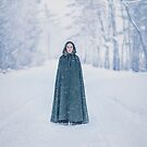 Lady Of The Winter Forest by Evelina Kremsdorf
