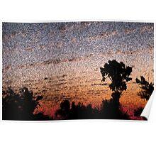 Sunset fresco Poster