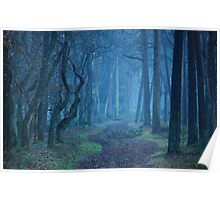 Entering the mysterious world of the blue forest Poster