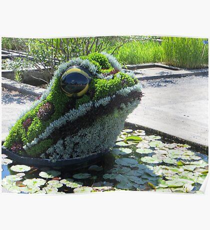 Swamp Creature Poster