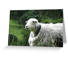 This coat doesnt fit!--Ill take it back! Greeting Card