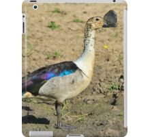 Knob-billed Duck - Funny and Beautiful Nature iPad Case/Skin