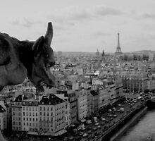 Notre Dame by klindy7