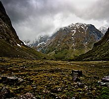 Near Homer Tunnel, Miford Sound, New Zealand by Trishy