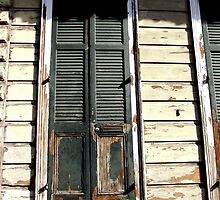 Rotting old door in the French Quarter by Ronee van Deemter