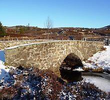 Water under the bridge! by Braedene