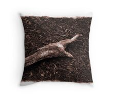 Aged beauty Throw Pillow