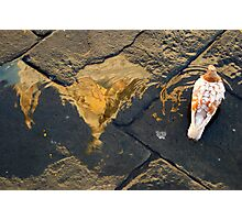 Cathedral Reflection and Pigeon, Florence, Italy Photographic Print